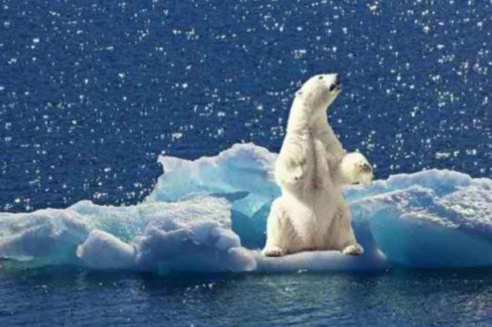H έντονη θέρμανση της Γης έχει συνέπειες