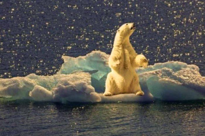 Η μεγαλύτερη επιστημονική αποστολή που έχει γίνει ποτέ στην Αρκτική