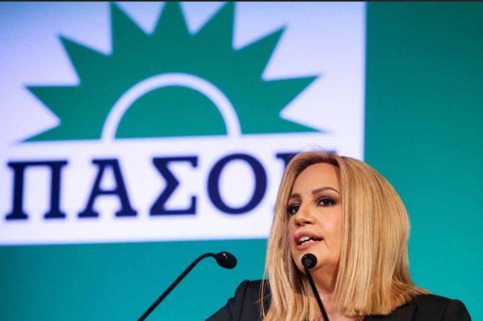 Το συνέδριο του ΠΑΣΟΚ , το σχεδιο πολιτικής διακήρυξης