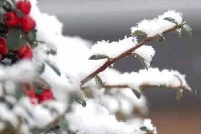 Διακοπή της κυκλοφορίας στα ορεινά της Αττικής έχει προκαλέσει η χιονόπτωση