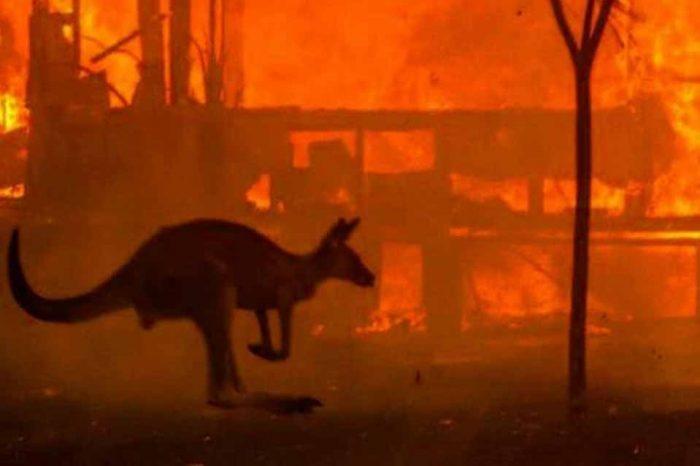 Έκταση διπλάσια του Βελγίου έχουν κάψει οι πυρκαγιές στην Αυστραλία