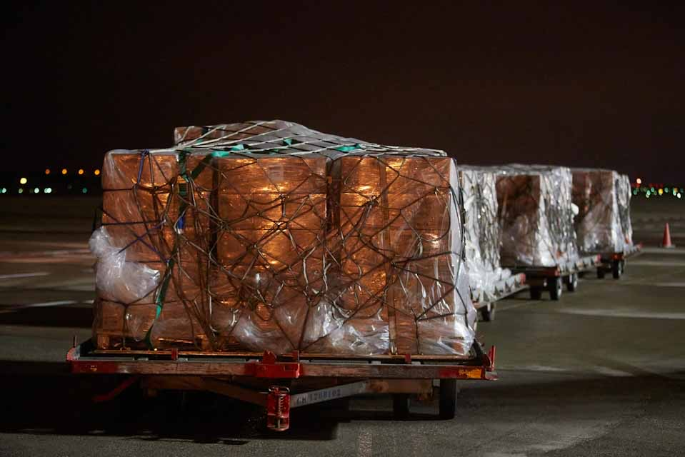 Παραλαβή υγειονομικού υλικού που δώρισαν τα Ηνωμένα Αραβικά Εμιράτα